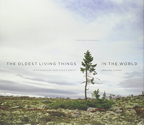 the-_oldest_living_things_in_the_world-